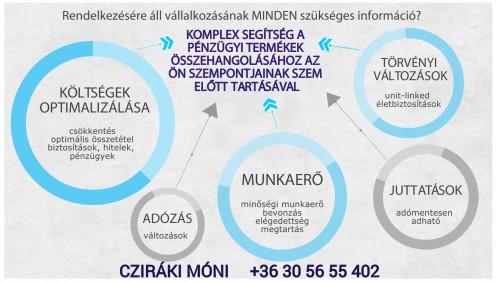 vállalkozásod pénzügyeinek összehangolása